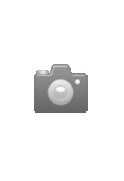 Marsum Arbeits-Shorts Top braun/schwarz