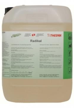 6041 Radikal