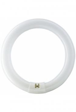 Fluoreszenzlampe MASTER TL-E Circular ..